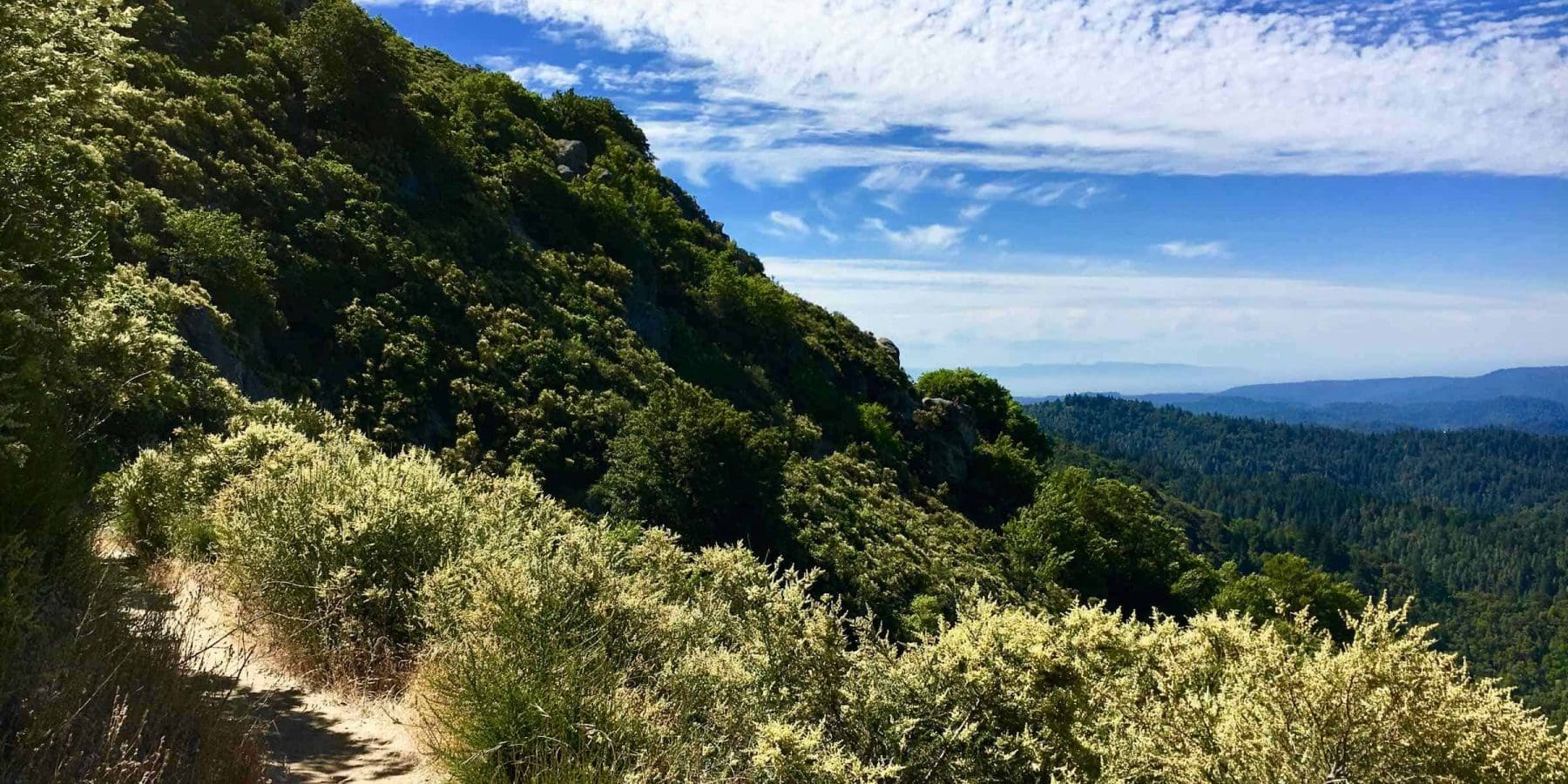 Castle Rock State Park Trail