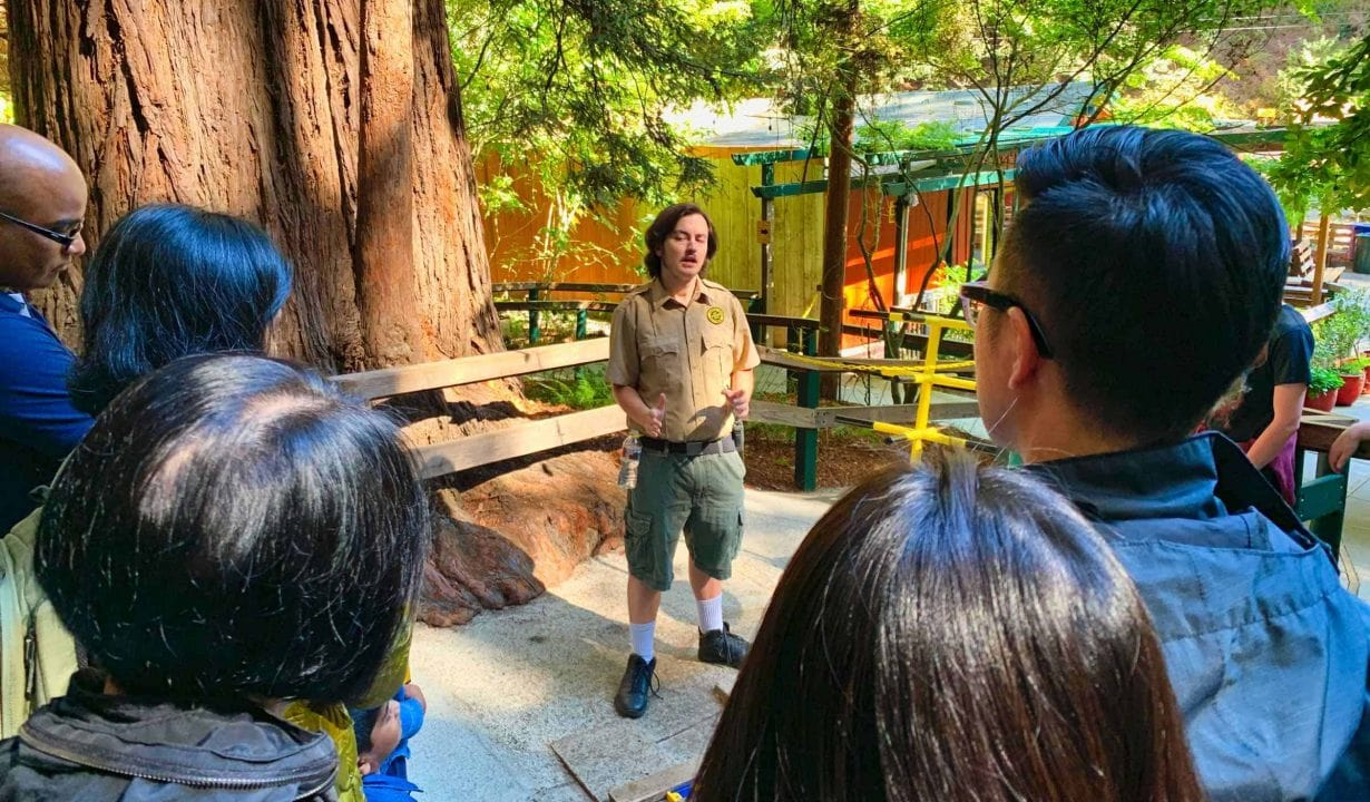 Mystery Spot Guide Tour