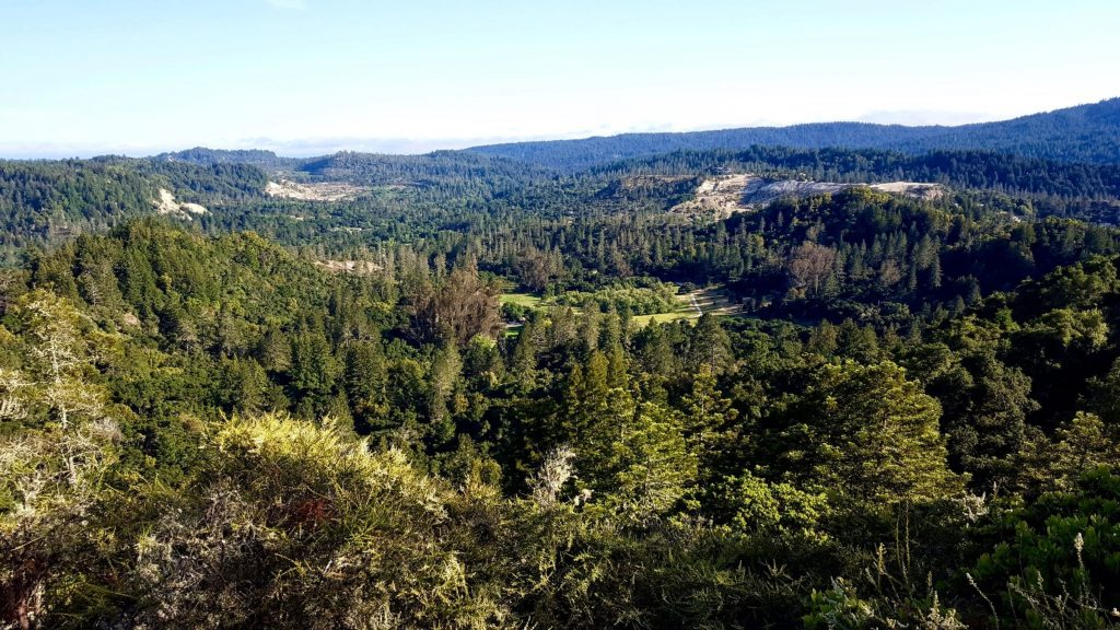 Aerial view of Quail Hollow Ranch County Park