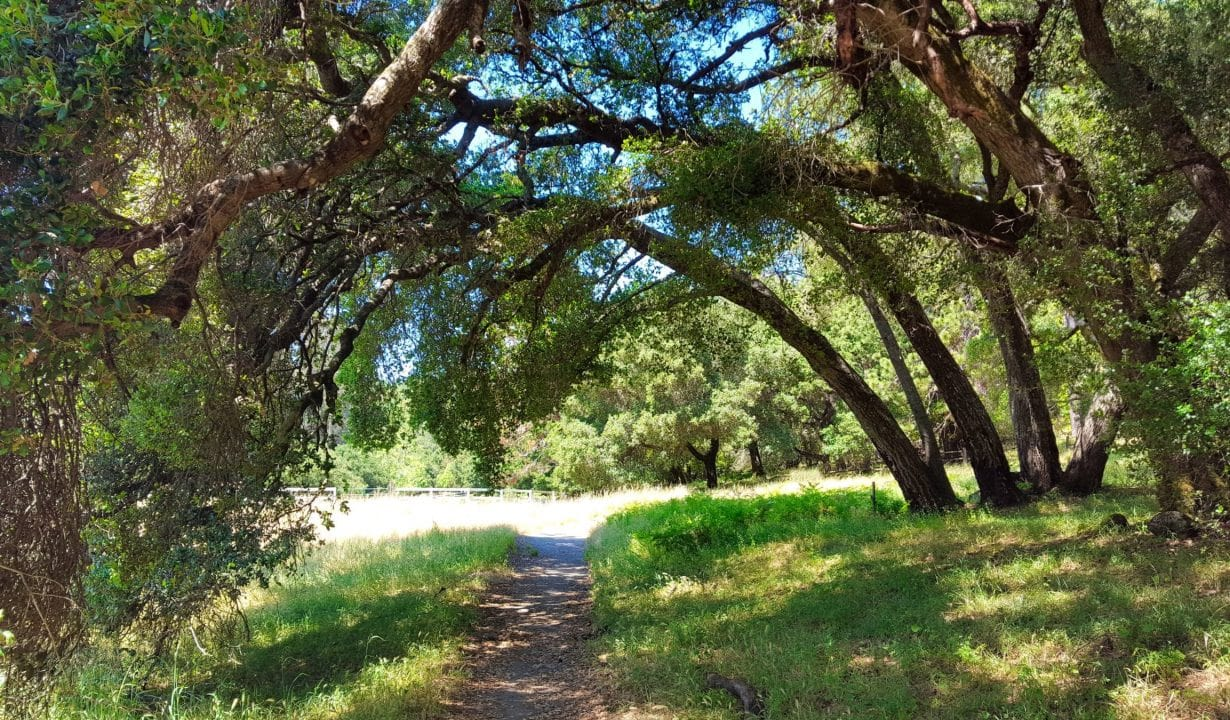 Quail Hollow Ranch County Park