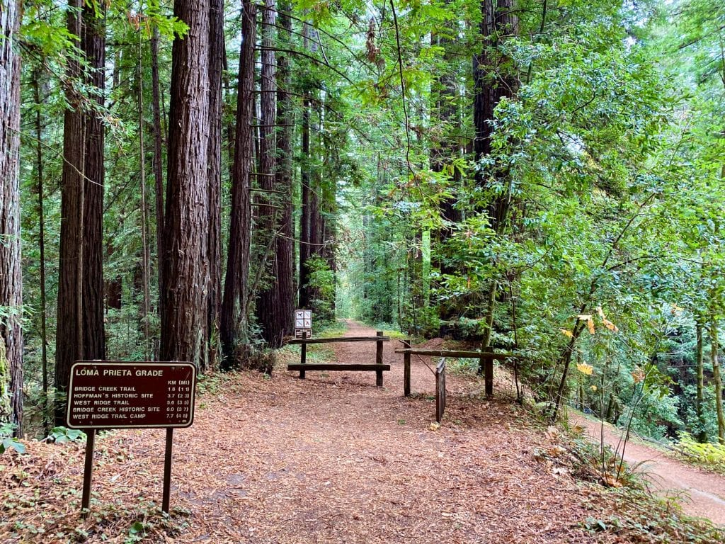 Trailhead leading to Maple Falls