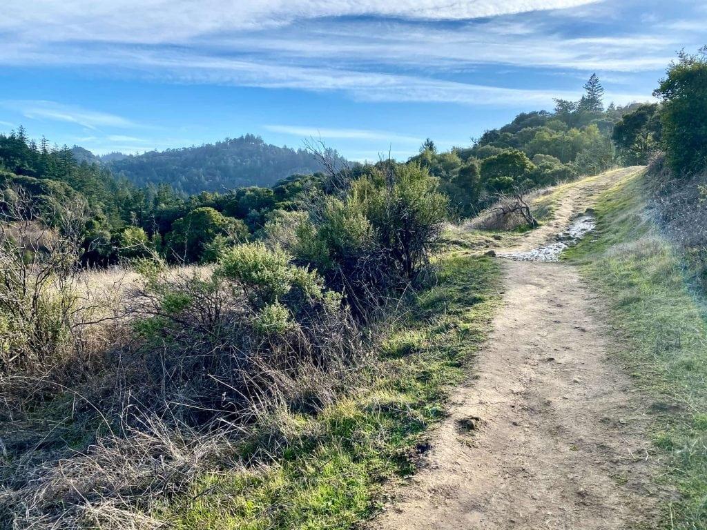 Ipiwa Trail (Bay Area Ridge Trail)